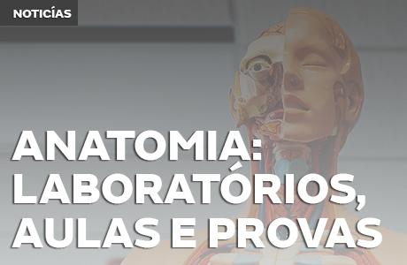 Anatomia: Laboratórios, Aulas e Provas - Saiba tudo sobre essa matéria da Medicina